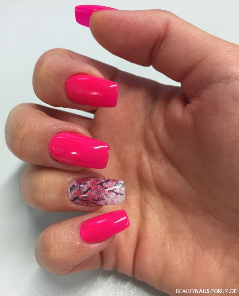 Fullcover neon Pink / Kirschbaumblüten