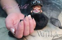 Dezente Nailart in Schwarz weiß - French Manicure Nageldesign