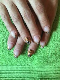 tiger pinselmalerei Nageldesign