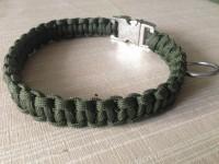 olivgrünes halsband Suche Tester für Hundeleinen und -halsbänder in Haustiere