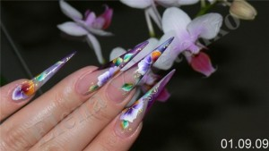 Fertige Stiletto Nails Anleitung Stiletto Fingernägel mit Naildesign in Nageldesign & Modellage Anleitungen
